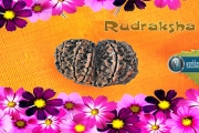 rudrakshm-wallpaper-1920x1024-worldastro.us.jpg